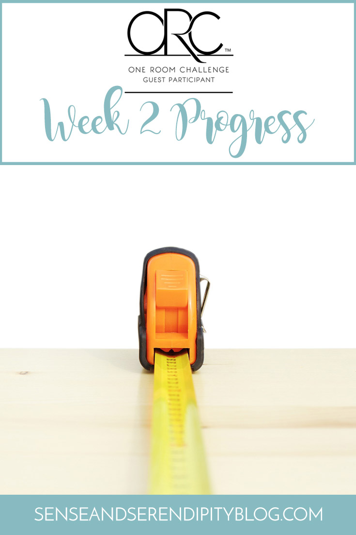 ORC Week 2 Progress | Sense & Serendipity