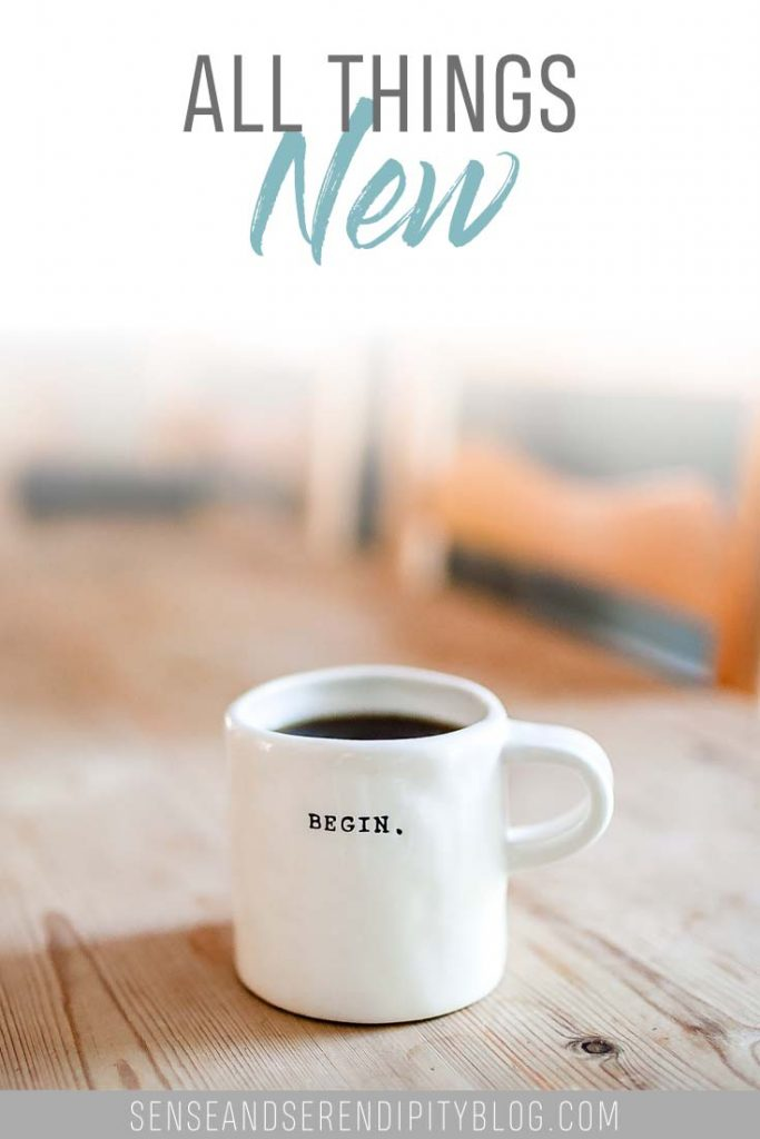 All Things New | Sense & Serendipity