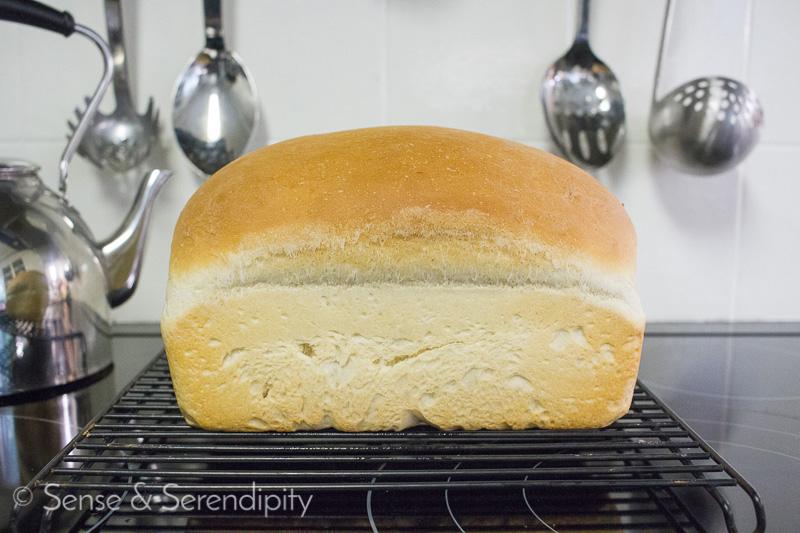 The Best Homemade Sandwich Bread