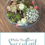 Make Your Own Succulent Terrarium Decor